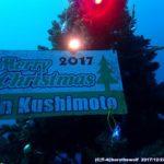 海中クリスマスツリー2017 in 串本